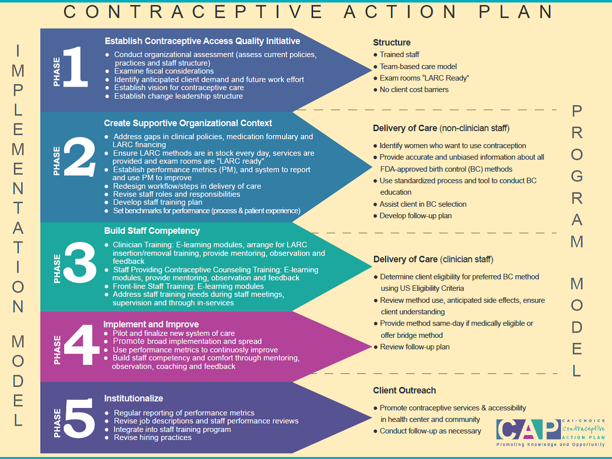 Implementing Cap Contraceptive Action Plan  Teen Pregnancy