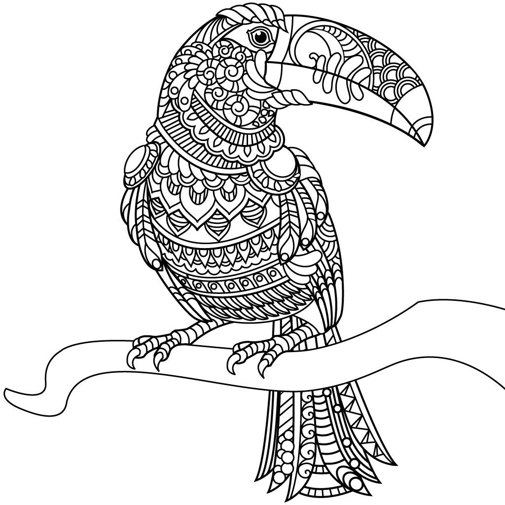 coloring book for adults is an app with 100 coloring pages if you like - Ap Coloring Book