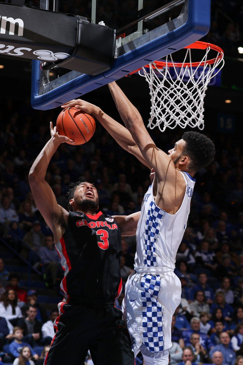 Not in our house Go big blue, Kentucky basketball, Kentucky