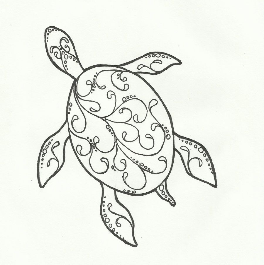 Images For Drawings Of A Turtle Sea Turtles Pinterest