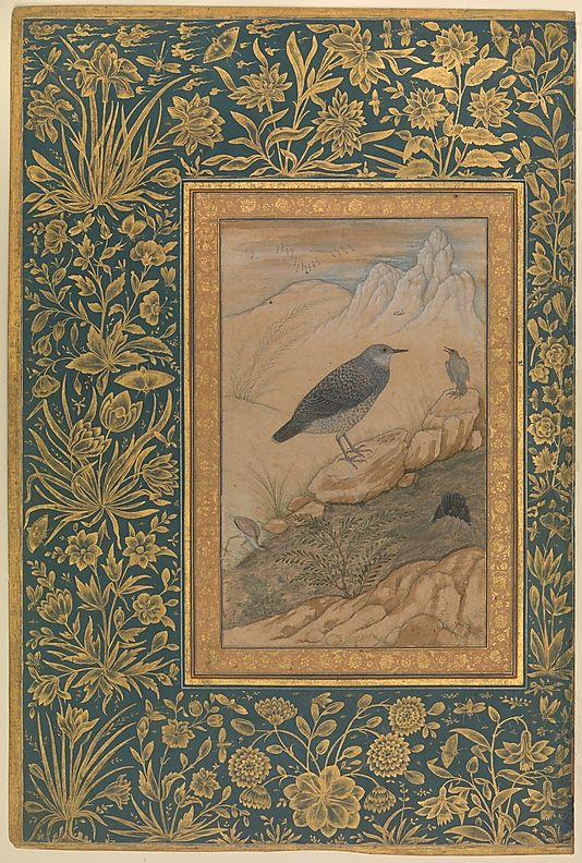 """""""Diving Dipper and Other Birds"""", Folio from the Shah Jahan Album Painting by…"""