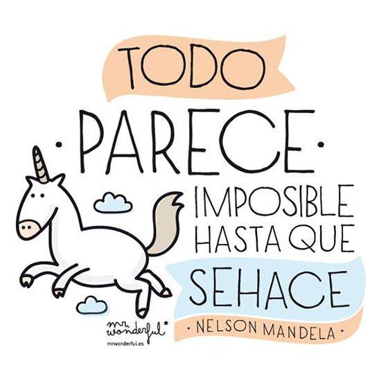 frases inspiradoras mr wonderful - Buscar con Google   Frases   Mr ...