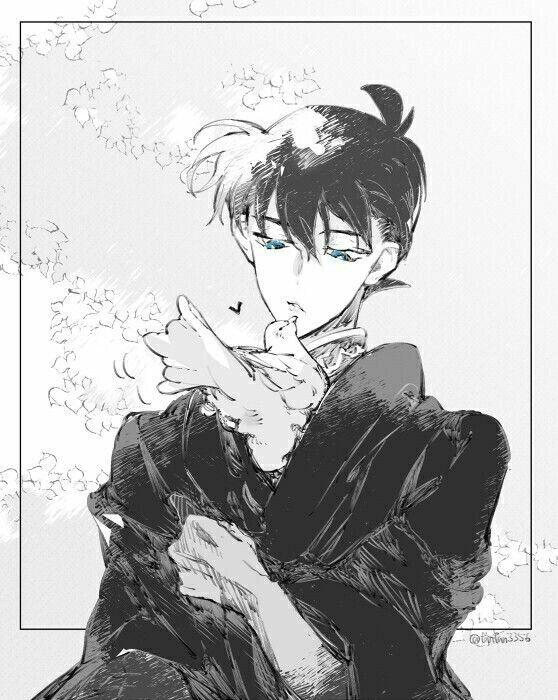 Conan/Shinichi | Shared Folder | Detective Conan Español Amino