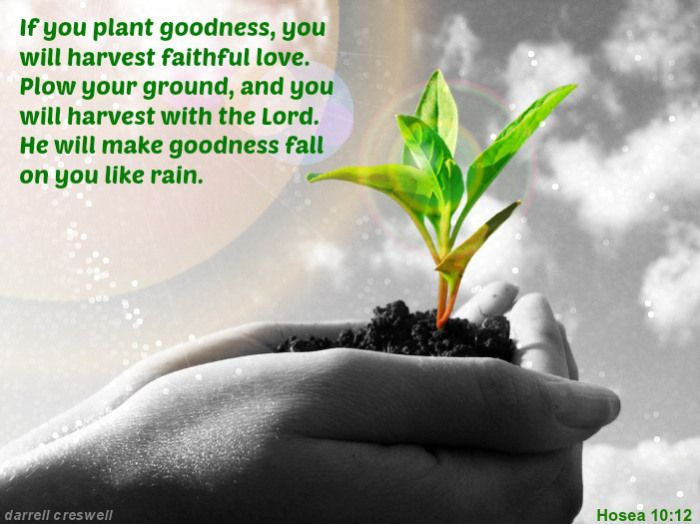 Inspirational pictures images and bible verses of god s for Rainwater harvesting quotes