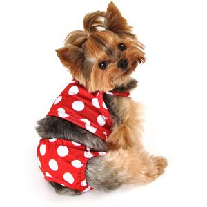 Simply Dog Red Dot Swimsuit Dog Swimsuit Dog Clothes