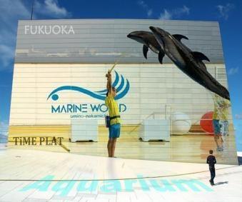 Time plat best spot aquarium for Aquarium plat