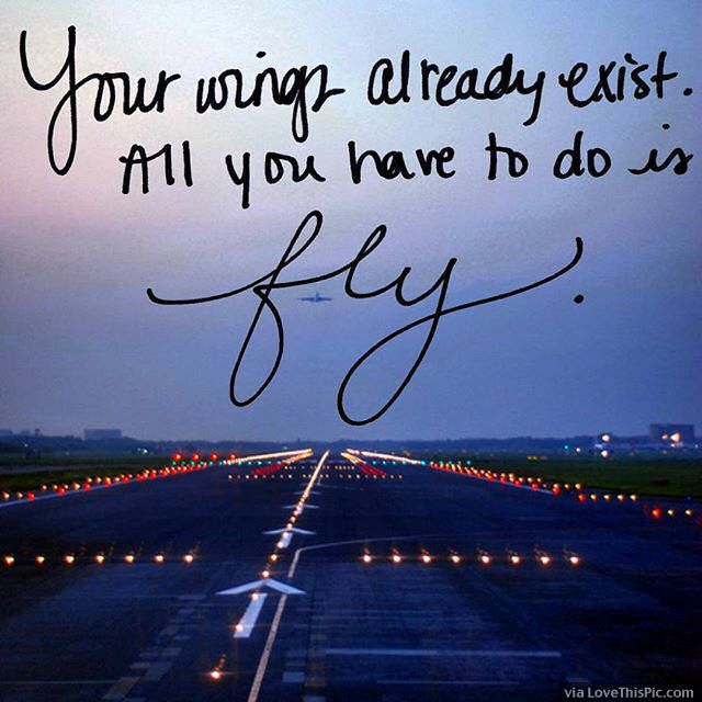 All You Have To Do Is Fly Life Quotes Quotes Positive Quotes Quote