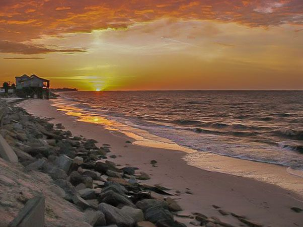 Pin By Deb S Forgotten Coast Rentals On Alligator Point Beach Bald Point State Park Florida State Parks Family Vacay Places To Go