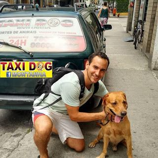 TAXI DOG MONTANHA TRANSPORTE DE ANIMAIS NO RIO DE JANEIRO: Rafael Nery e Dino(Labrador) 04/01/2016 -- Primeir...