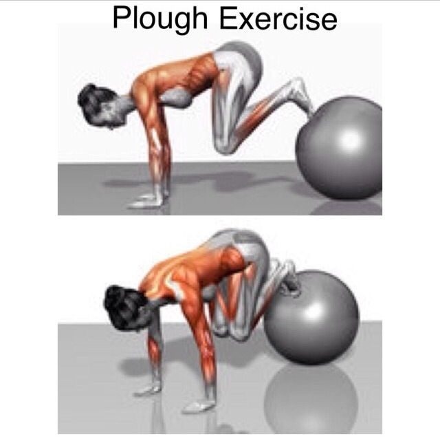 Plough exercise