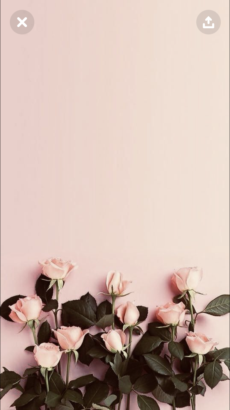 Pin By Kelli On New Iphone Wallpapers Floral Wallpaper Phone