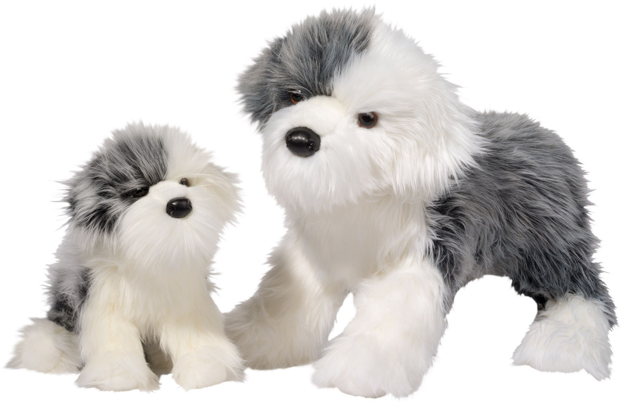 Large Sheep Dog Companion For People With Alzheimer S Dogs