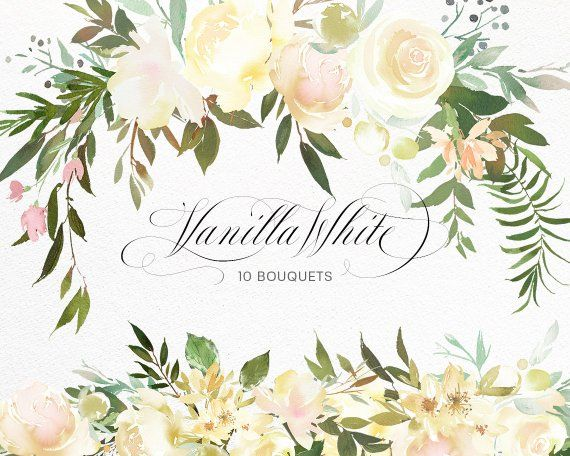 Vanilla White Watercolor Flowers Green Leaves Clipart
