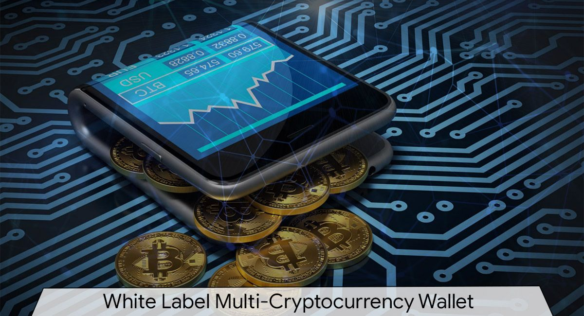 multi currency cryptocurrency wallet