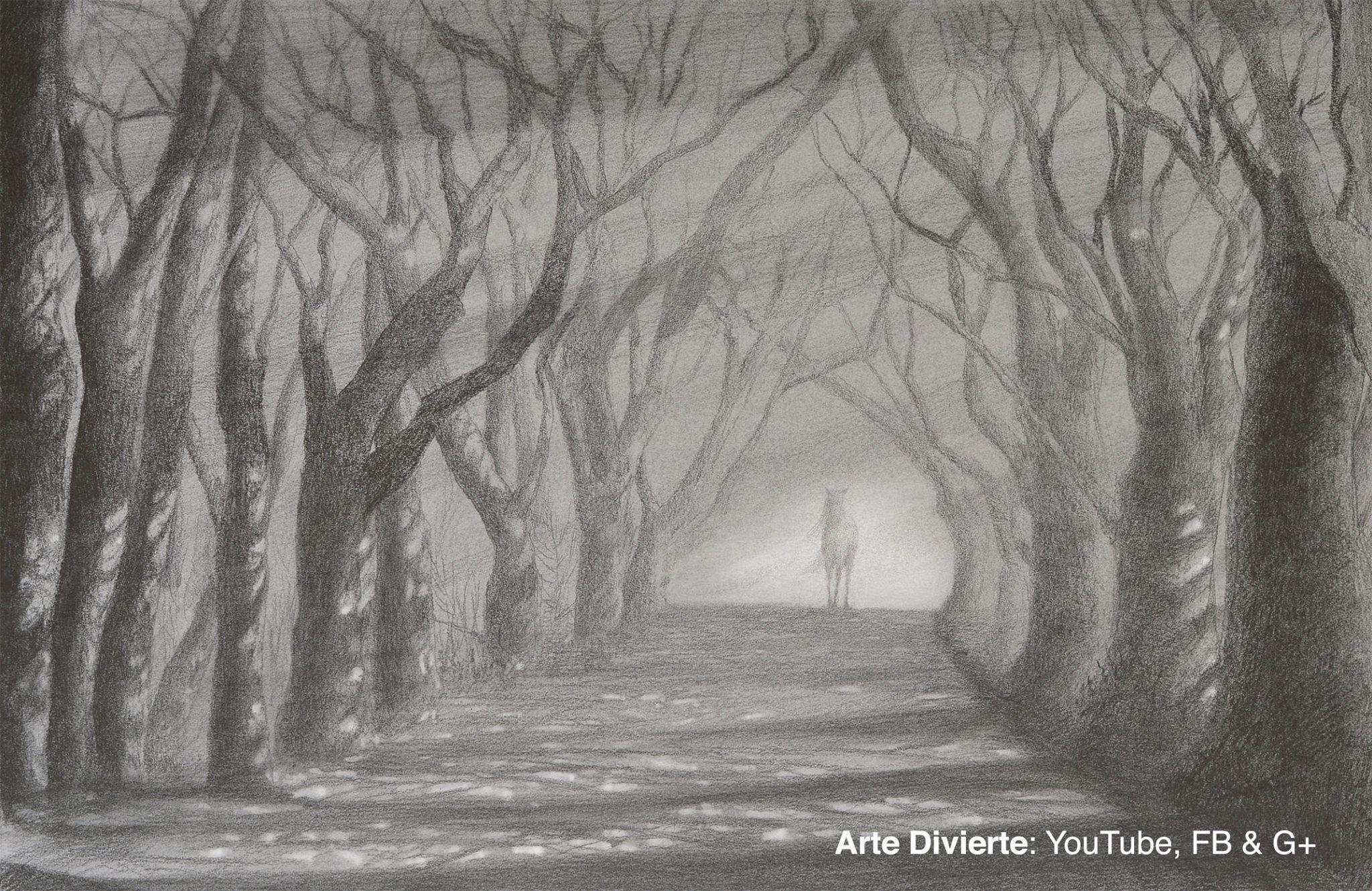 Como Dibujar Un Camino Con Arboles Sol Y Sombra A Lapiz Arte Dibujo Artedivierte Caminoconarboles Solysombra Tree Drawing Realistic Drawings Landscape