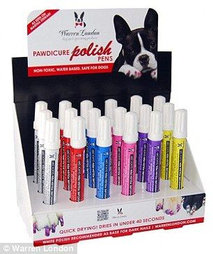 Nail Art For Dogs The Latest Trend For Pampered Pooches Is Barking Mad Dog Grooming Business Pampered Pooch Dog Grooming Salons