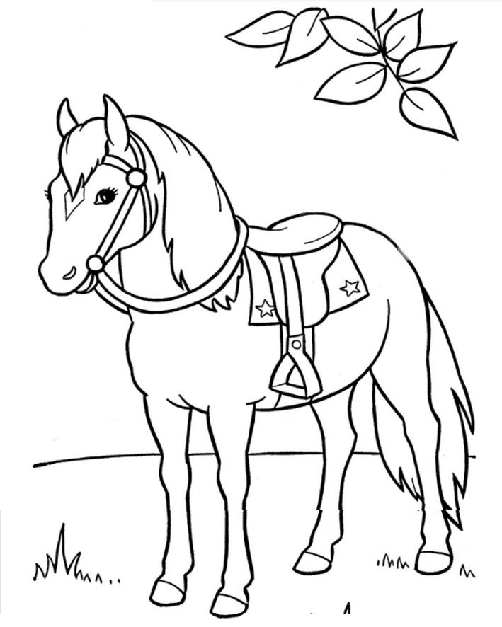Horse Saddle Horse Coloring Pages Animal Coloring Pages Horse