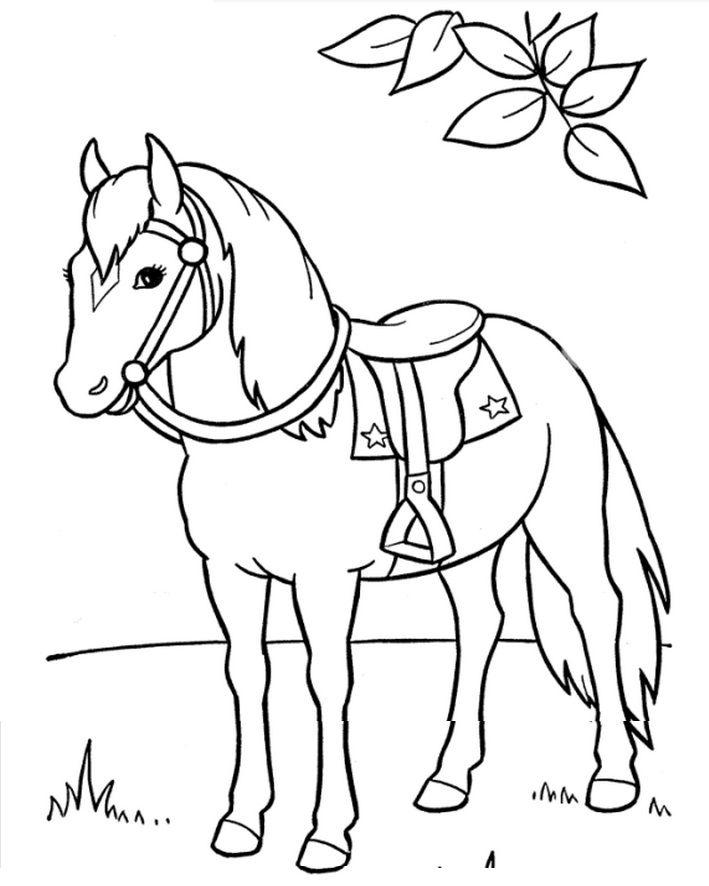 Horse Saddle Horse Coloring Books Animal Coloring Pages Horse Coloring Pages