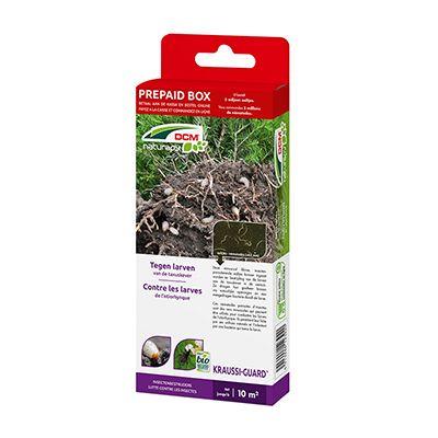 DCM Kraussi-Guard® - Tegen larven van de taxuskever. Deze minuscule, insectenparasiterende aaltjes kunnen ingezet worden ter bestrijding van de larven van de taxuskever in de siertuin. Ze dringen hun gastheer binnen via natuurlijke openingen en een meegedragen bacterie doodt de larve.