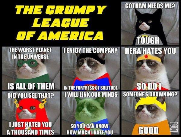 grumpy cat justice league