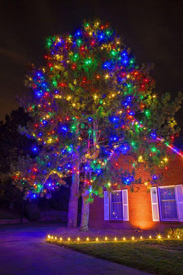 Christmas Lights Hanging Service Christmas lights