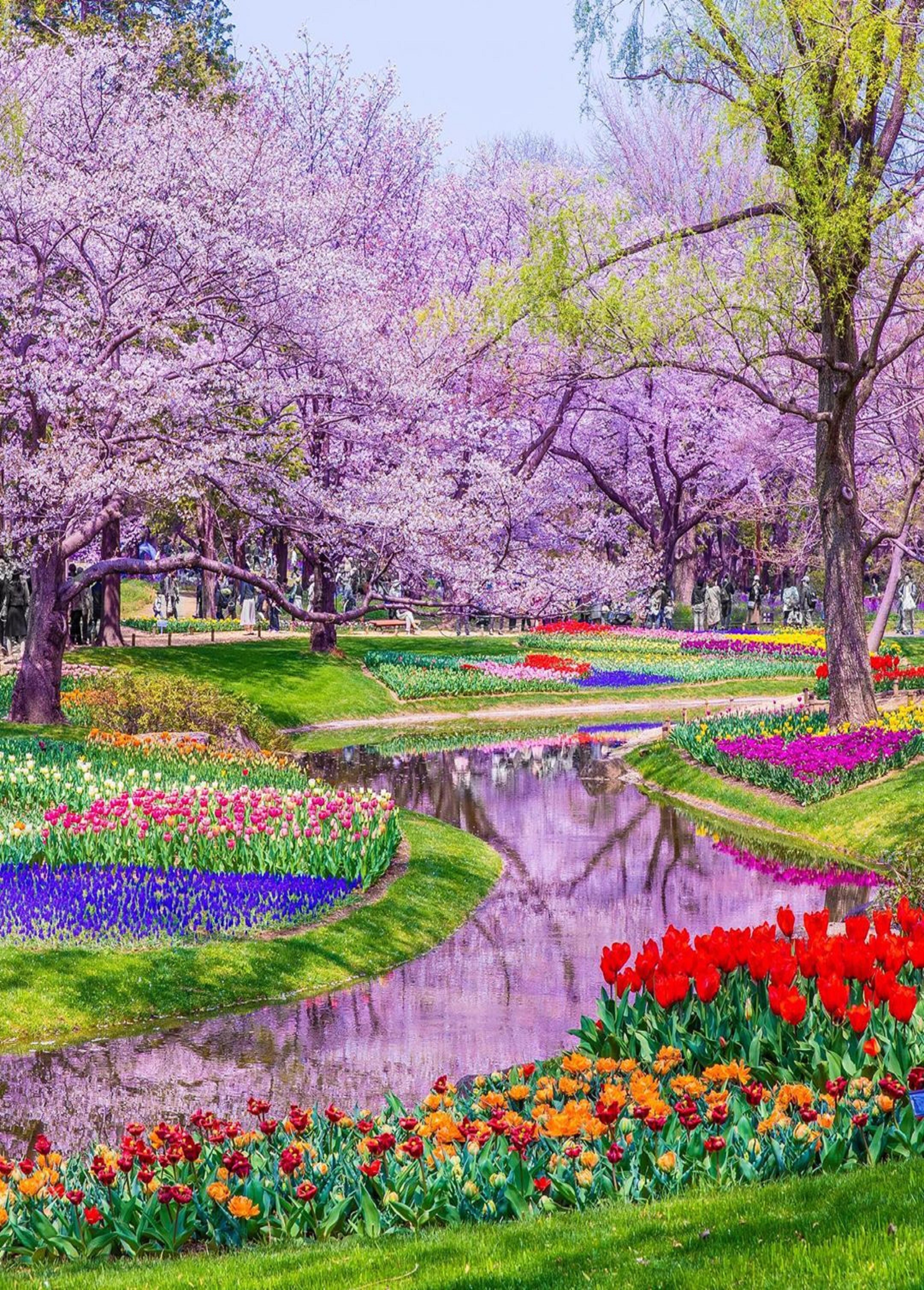 Pin By Ivanka Kostova On Vsichko Beautiful Landscape Photography Spring Scenery Beautiful Landscapes