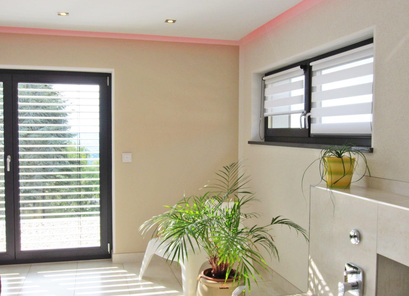rollo #badezimmer #palme #wellness Macht Euer Zuhause schöner mit ...