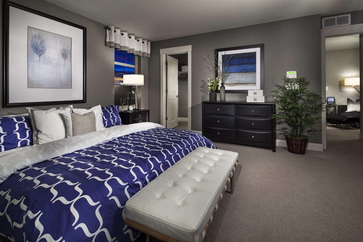 grey, white and royal blue master suite. smokey blue instead of