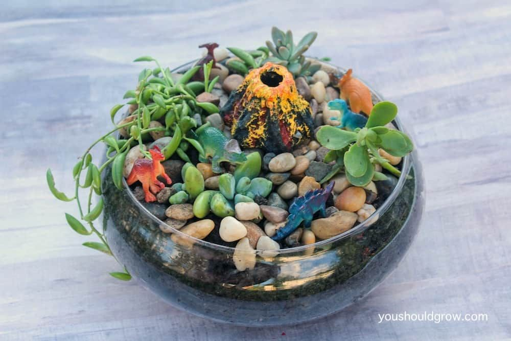 Make Money Gardening 29 Ideas To Start Earning Now is part of Miniature Succulent garden - Gardening can be more than just a hobby! Learn how you can make a profit from your home garden  Over 20 ideas so you can start earning now!