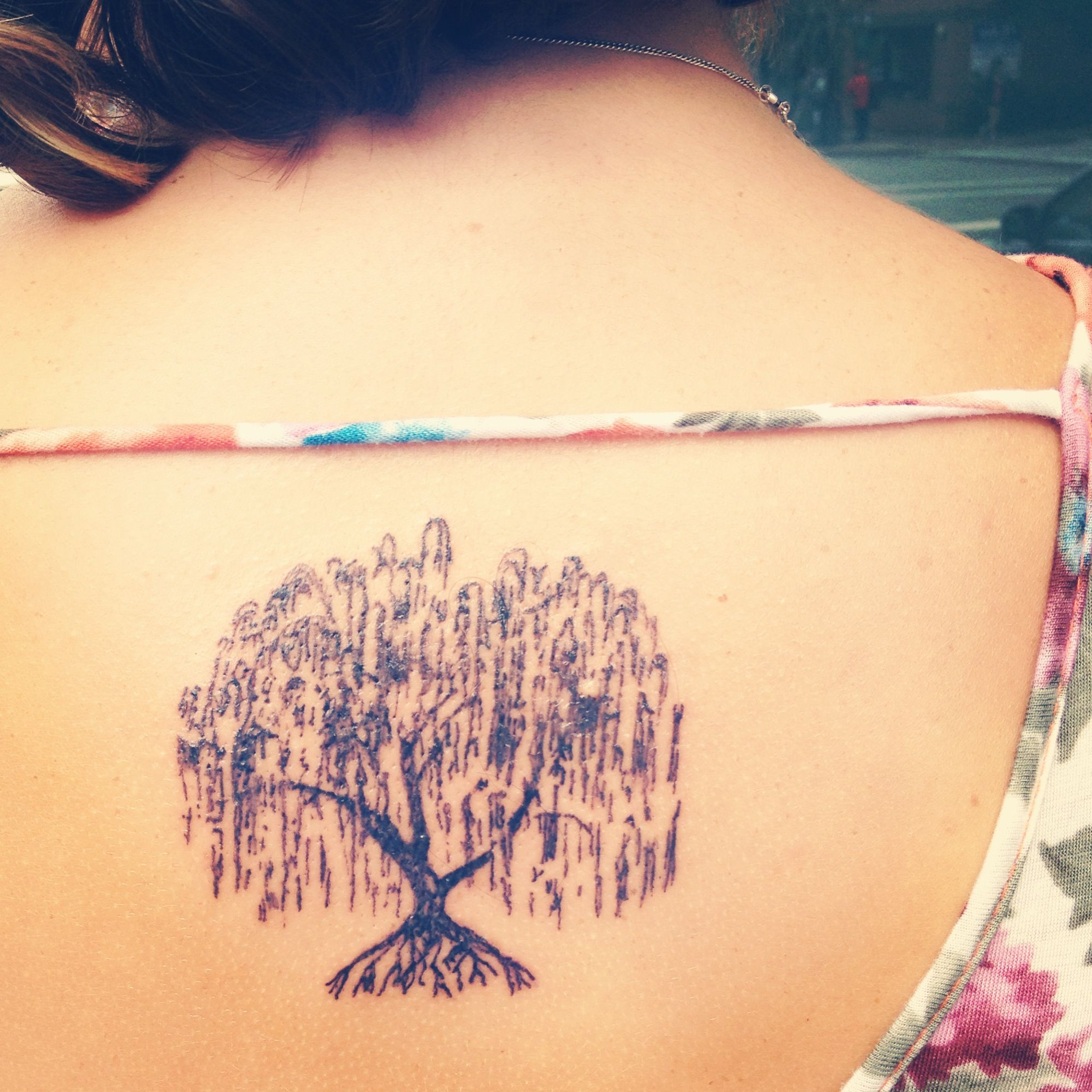 My new weeping willow tree tattoo! Love the sketch style