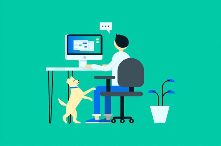 40+ Book designer jobs remote information