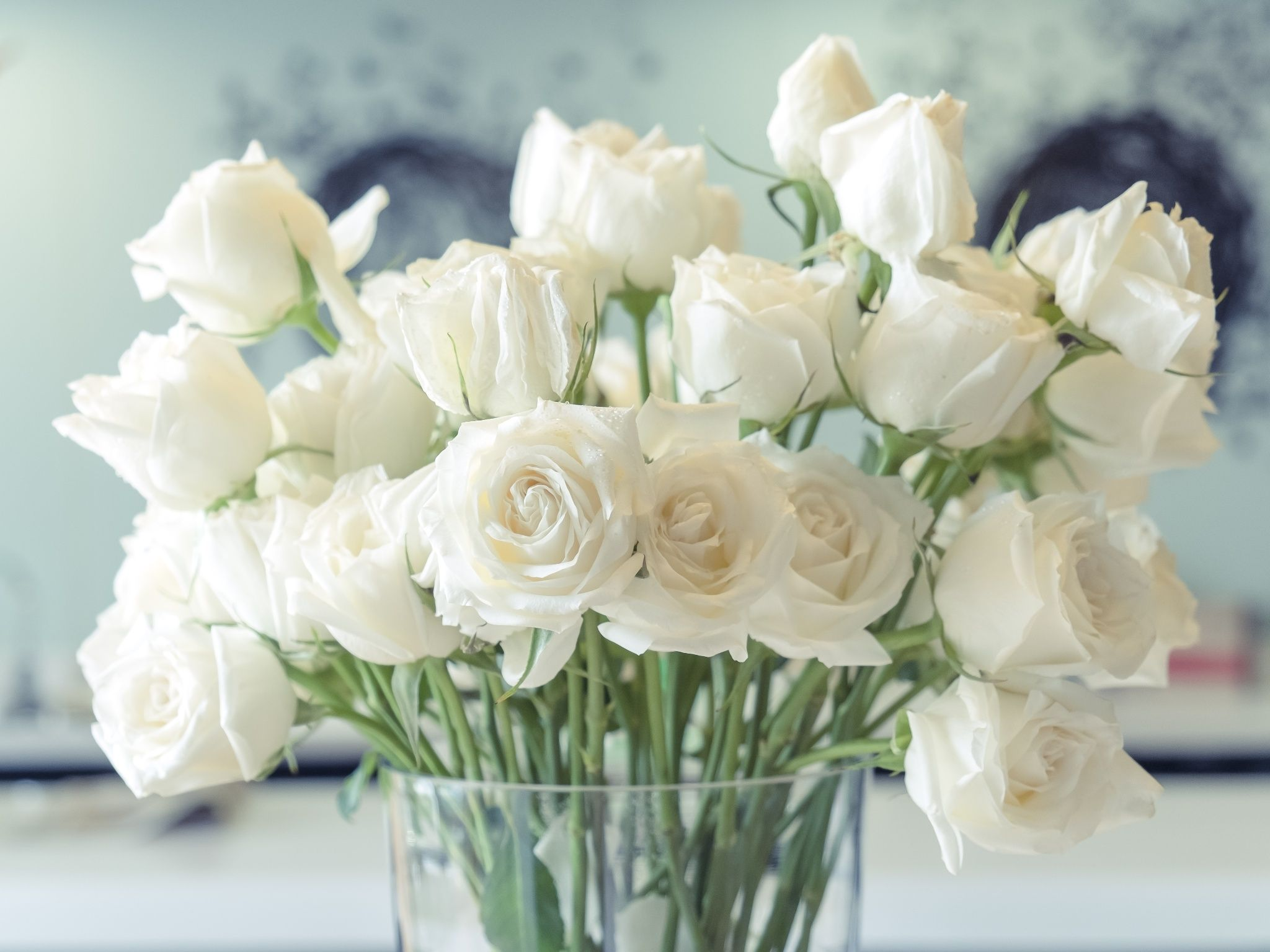 White roses in a glass vase | Weiße rose bedeutung