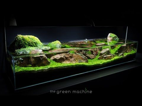 aquascape tutorial guide continuity by james findley the green