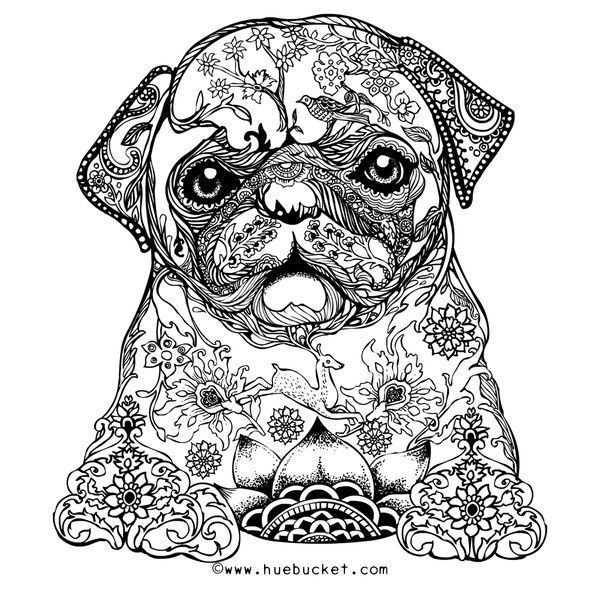 free pug adult coloring page with picture zentangle designs  pets