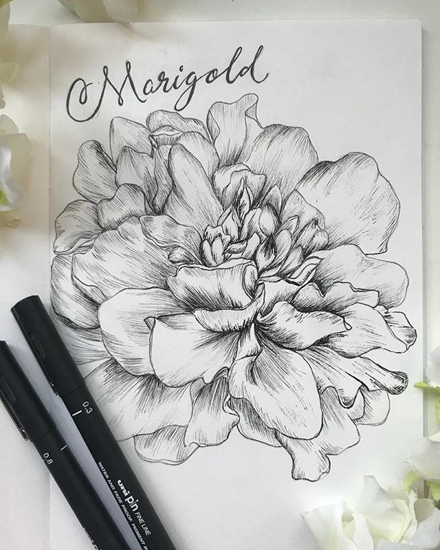 Marigold It feels so good after a long day to get down and