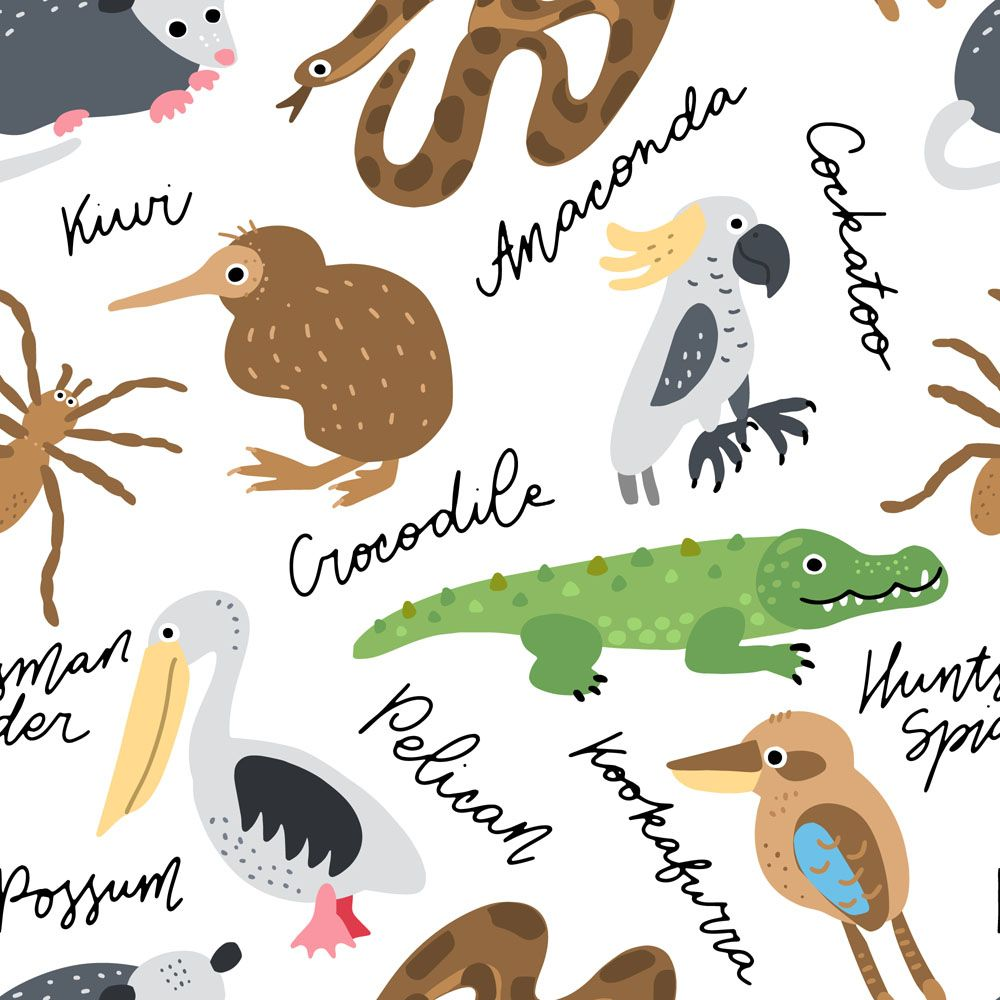 My Australia Animals Clipart In 2020 Australia Animals Animal Clipart Clip Art