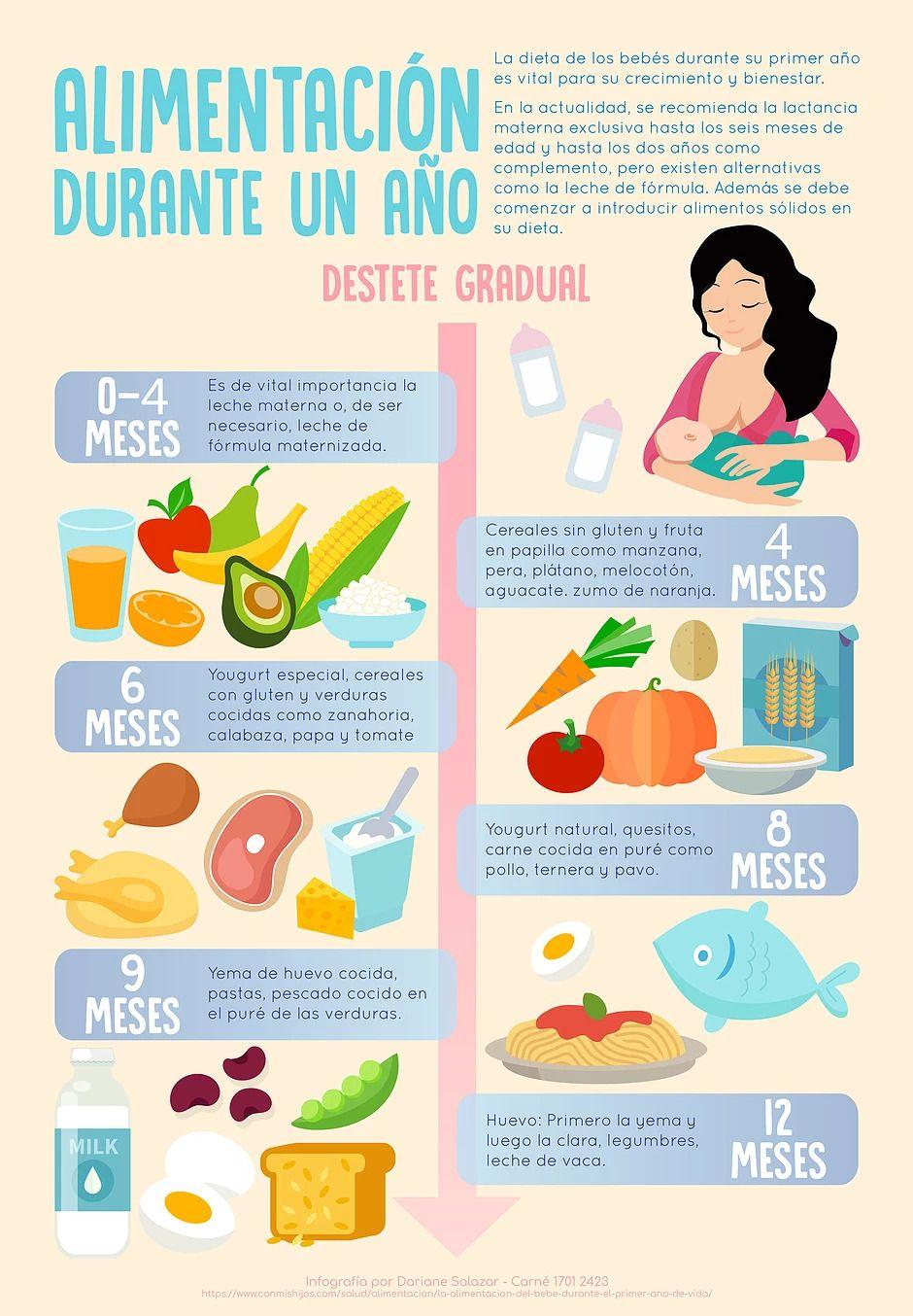 Infografia La Alimentacion De Tu Bebe En Su Primer Ano Shopping