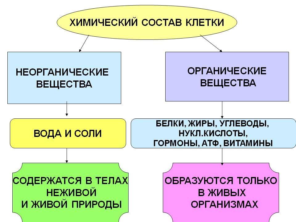 Кауфнем с 57 перевод 8класс