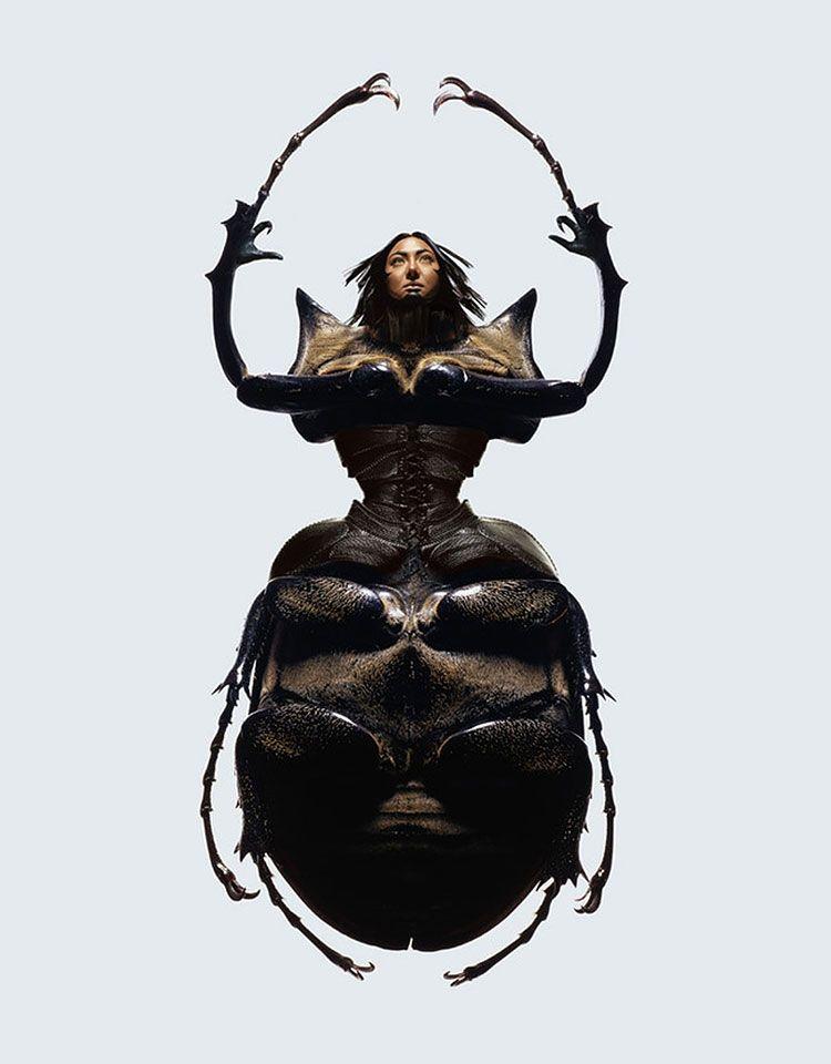 человек жук картинки уже про данную