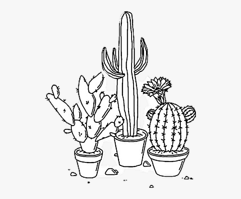 Tumblr Png Coloring Pages Aesthetic Transparent Black And Cactus Drawing Pretty Drawings Art