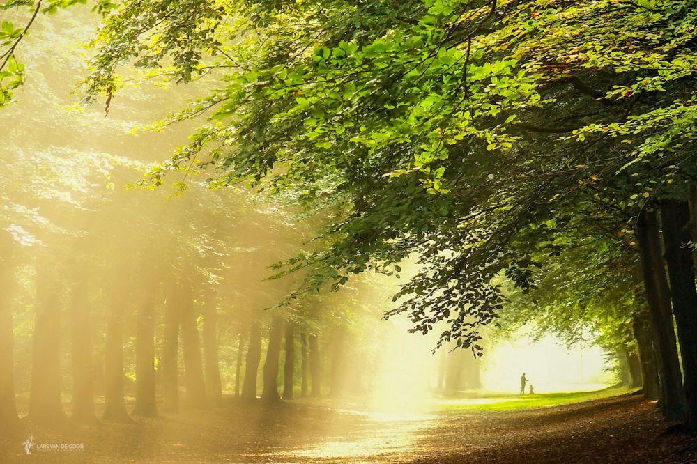 Sunrain by Lars van de Goor on 500px