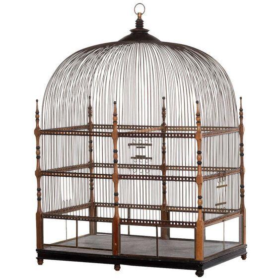 Pin Van Kenda Davis The Sequel Op Birdcage Stage Vogelkooi Decoratie Vogelkooi Decoratie