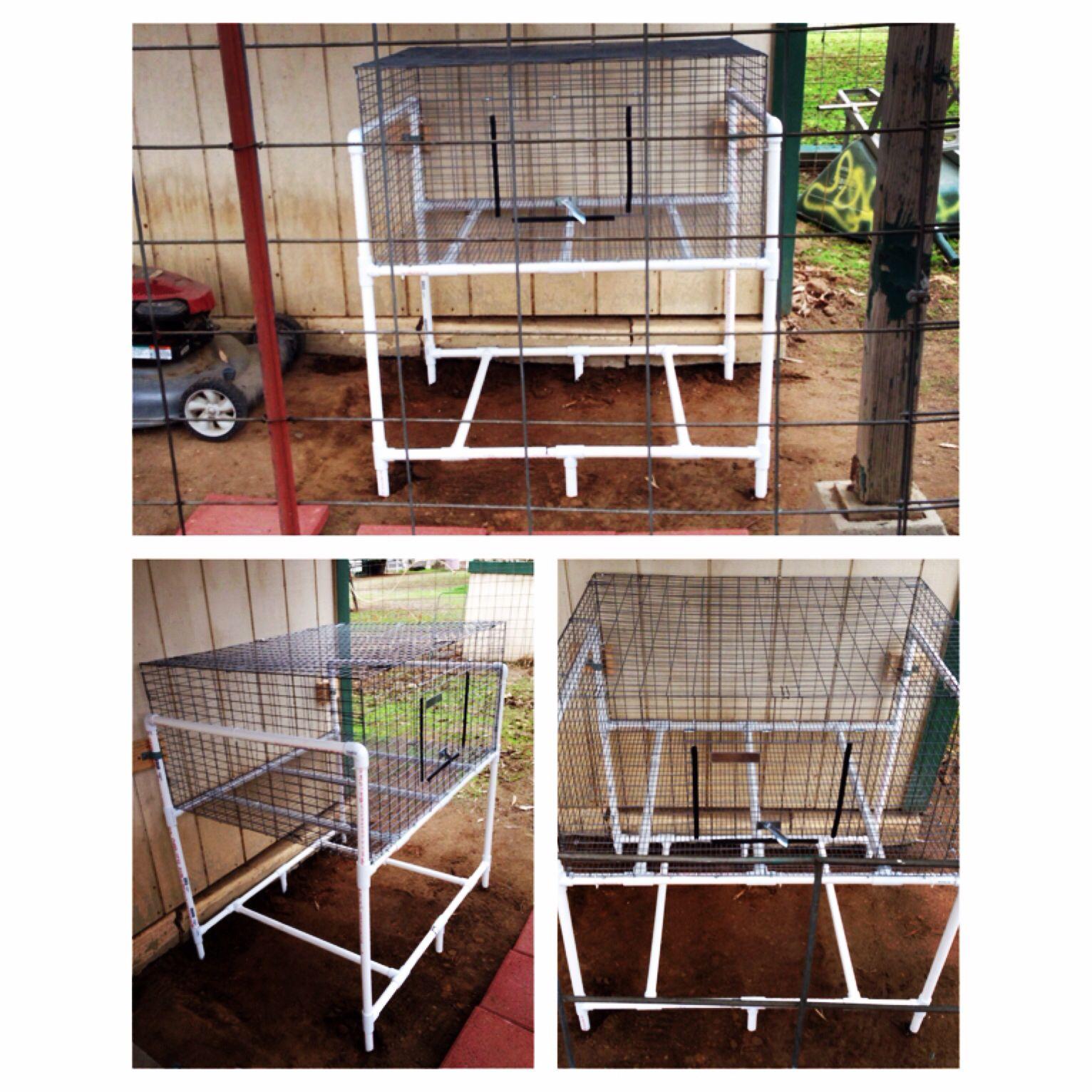 Diy pvc rabbit wire cage rack rabbits pinterest for Pvc rabbit cage