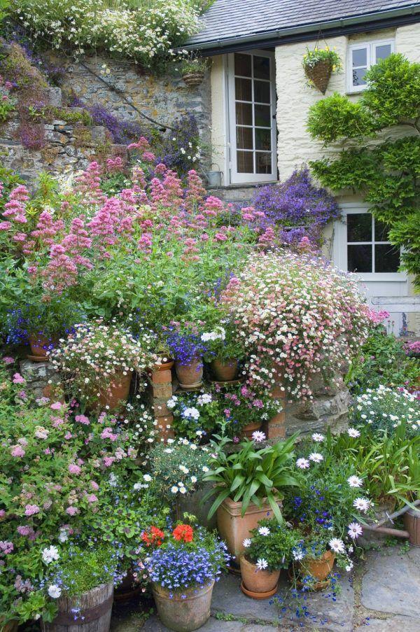 12 Ideas Para Decorar Con Macetas De Flores Flores En Maceta Macetas Jardineria En Macetas