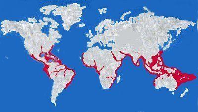 bull shark freshwater map