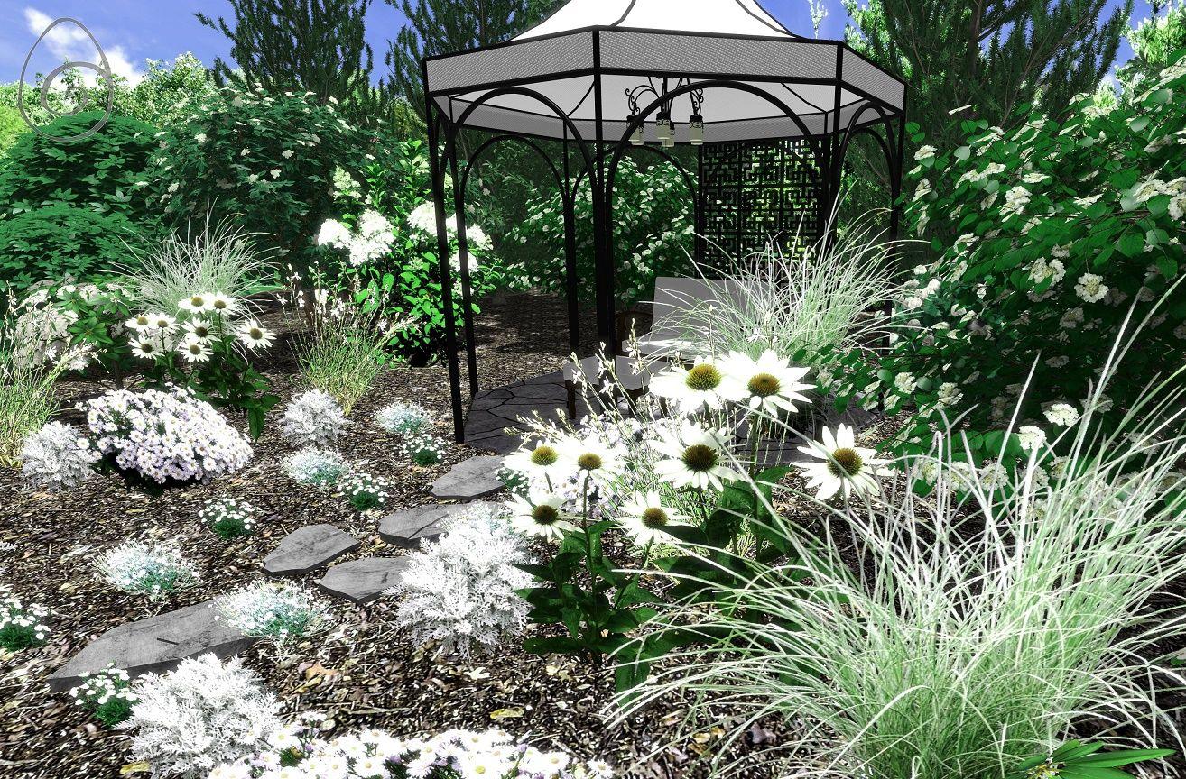 Biale Kwiaty W Ogrodzie Outdoor Garden Plants Garden