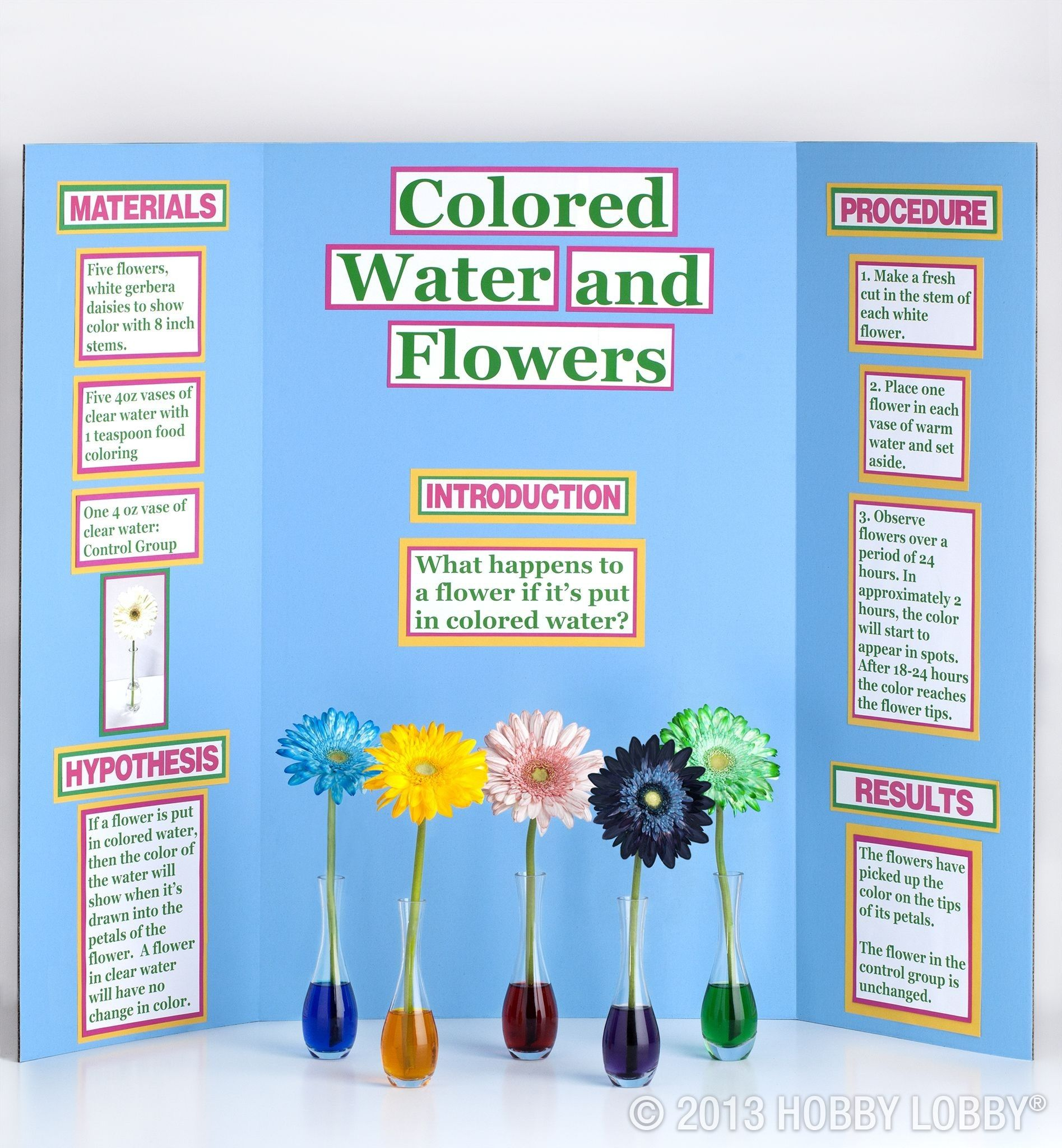 Science Fair Projects Color Changing Flowers