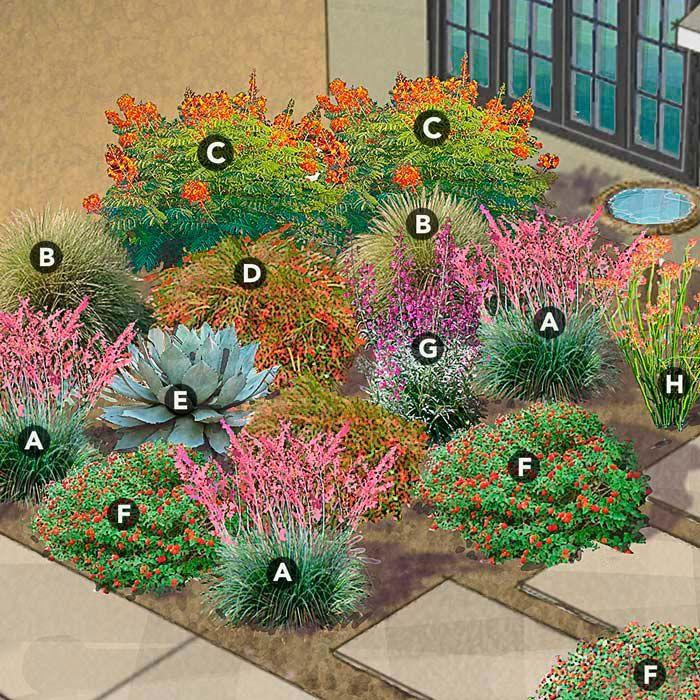 Pollinator Garden Design, Southwest Garden Plants