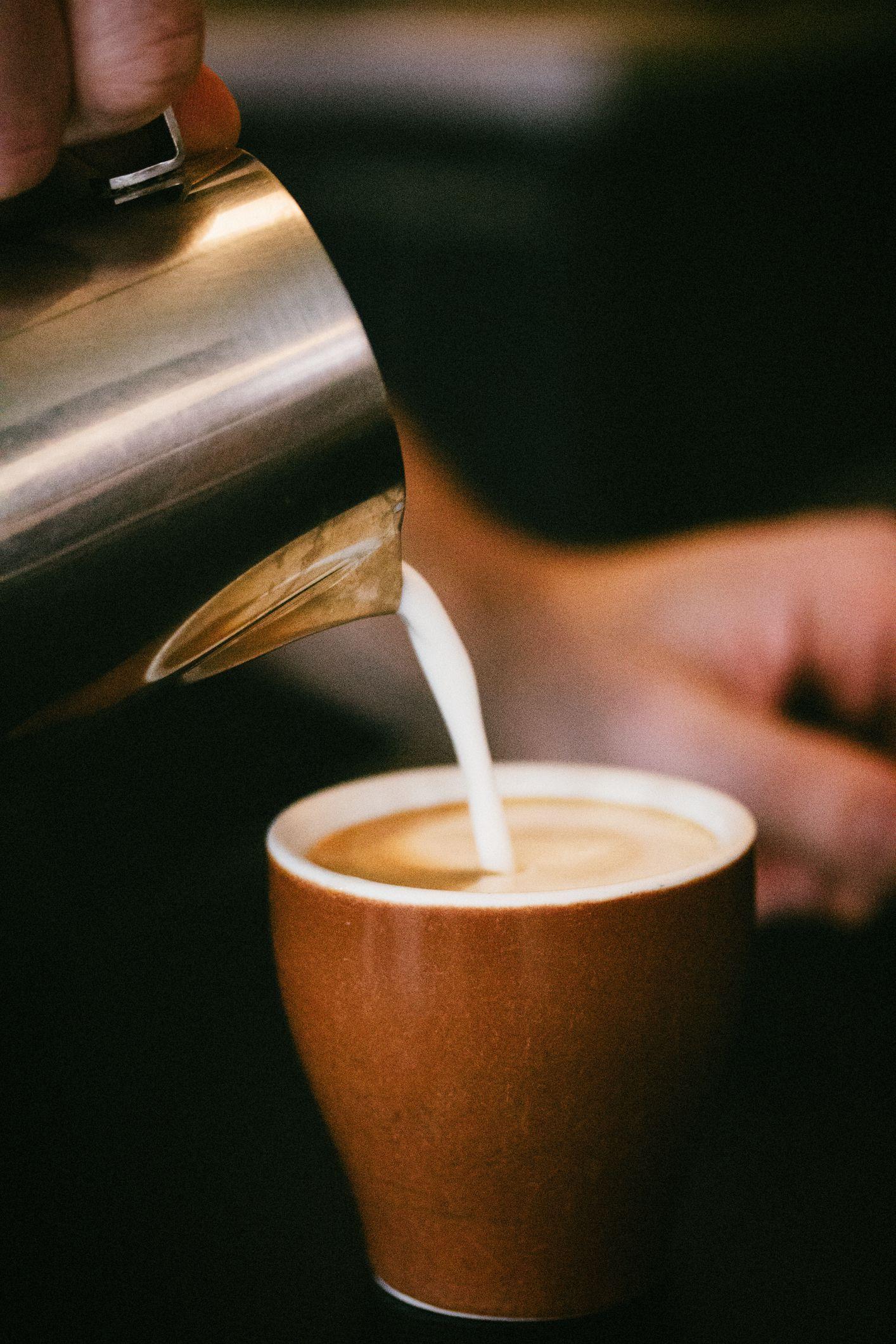 Basic Steamer Recipe | Steamer recipes, Steamed milk ...