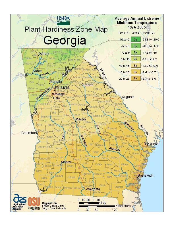 USDA Plant Hardiness Zone Map For Georgia Coweta Co Is Zone A - Us planting map